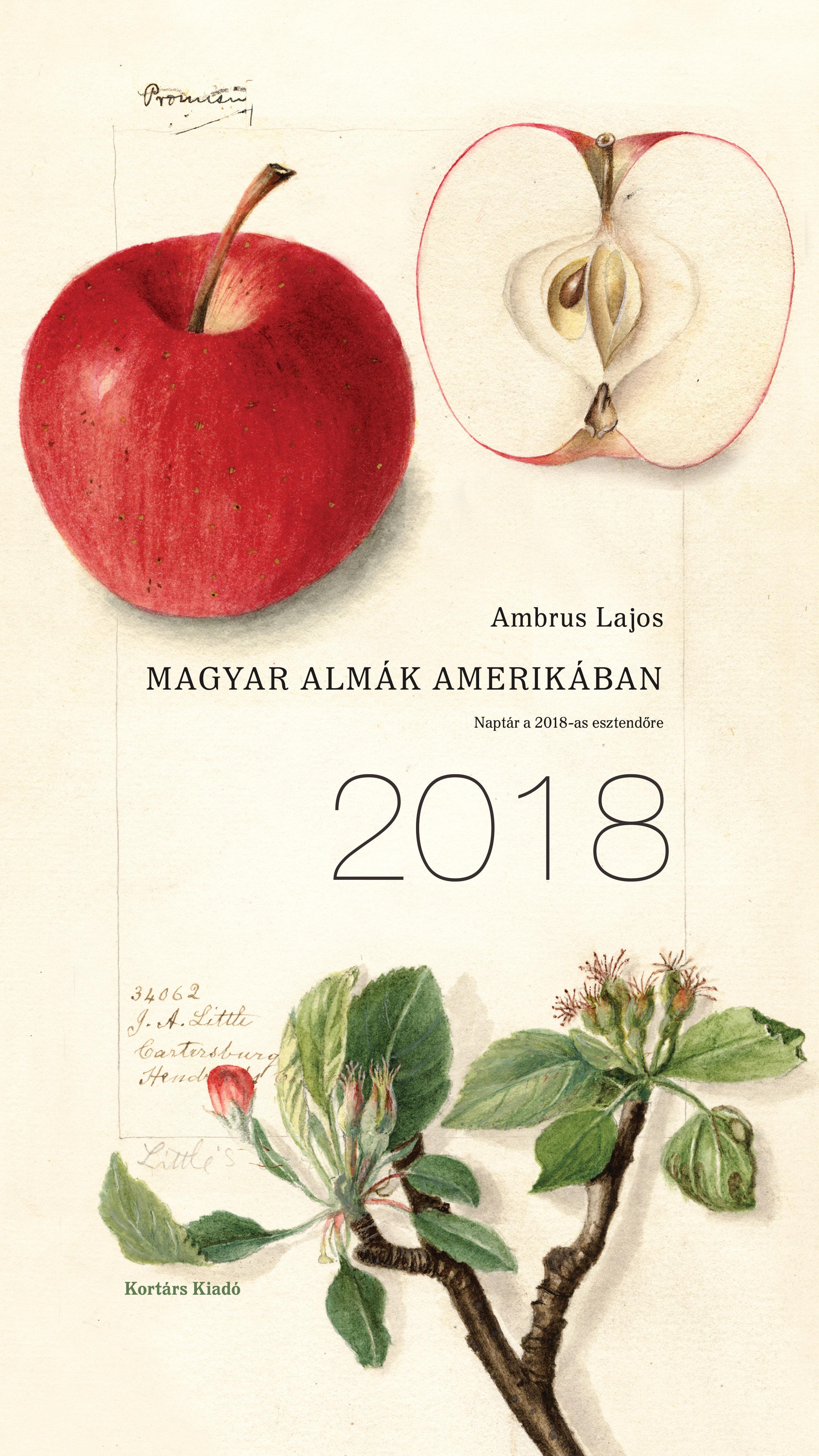 Magyar almák Amerikában