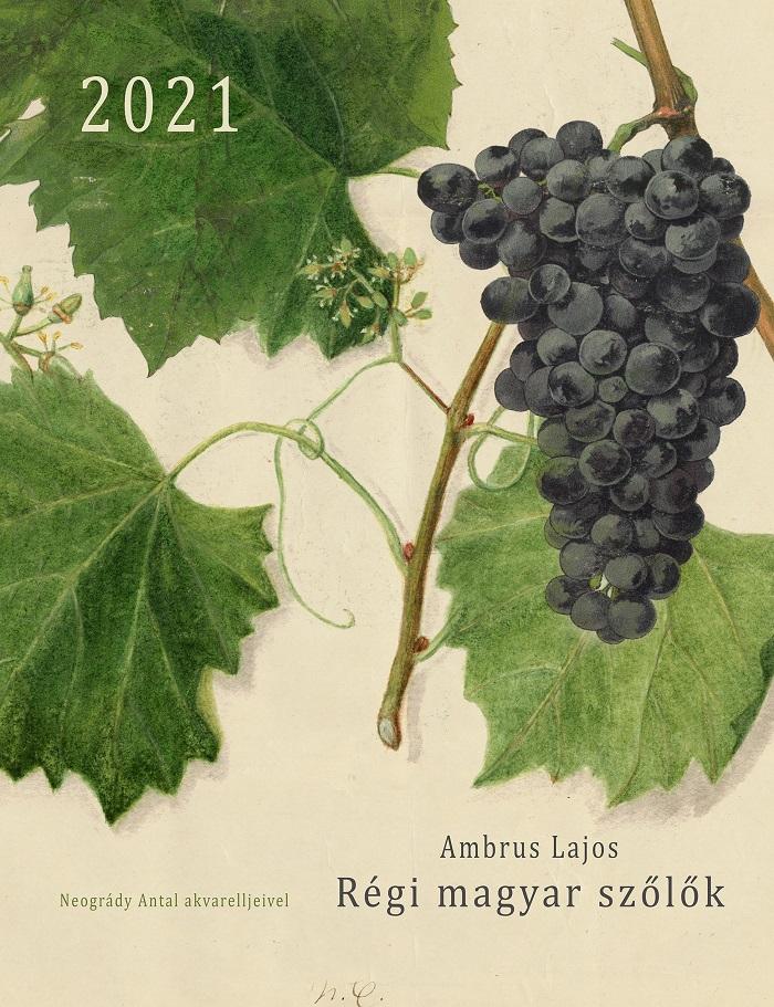 Régi magyar szőlők